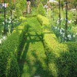Czy chcemy mieć profesjonalnie zaprojektowany ogród?